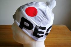 cepice_pegas_6